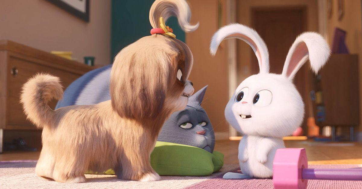 """""""Pets 2"""" ist der Sommerhit im Kino: Filmkritik und Verlosung"""