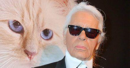 Karl Lagerfeld: Katze Choupette meldet sich zurück