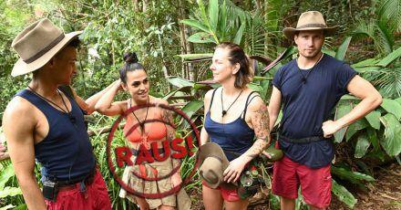 Dschungelcamp Tag 14: Null Sterne für Danni und Elena muss gehen