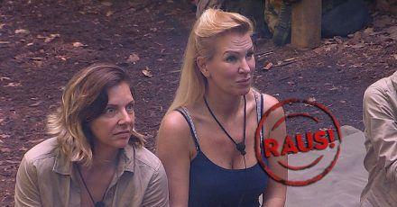 Dschungelcamp Tag 13: Höhenfluch und Claudia Norberg wurde rausgewählt