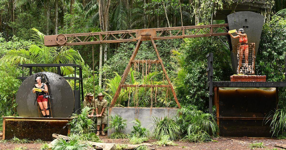 Dschungelcamp Tag 8: Jede Menge Sterne und muss gehen