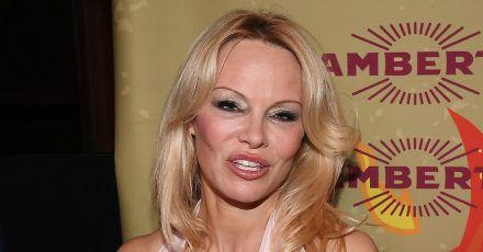 Pamela Anderson: Wie Männer immer mehr feminisiert werden