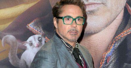 """Robert Downey Jr. nervt die Fans mit Geheimniskrämerei um """"Black Widow"""""""