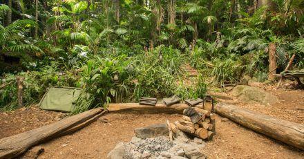 Das Dschungelcamp und das Inferno: Wird doch noch abgesagt?