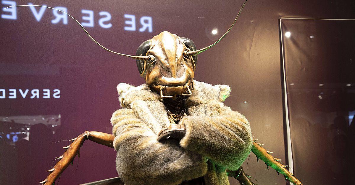"""""""The Masked Singer"""": So streng sind die neuen Sicherheitsmaßnahmen!"""