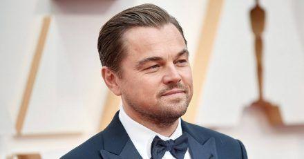 Leonardo DiCaprio rettet jetzt Berggorillas