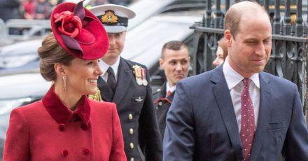 Prinz William hat heimlich als Telefonseelsorger gearbeitet