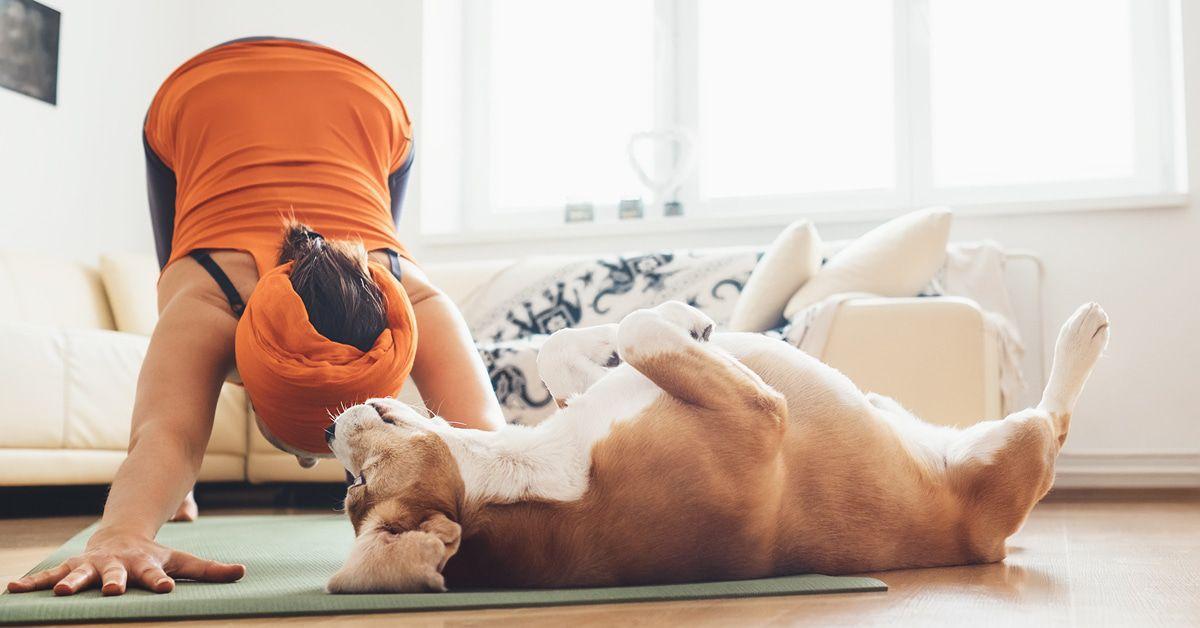 Welt-Yoga-Tag: Sieben sehr überraschende Fakten