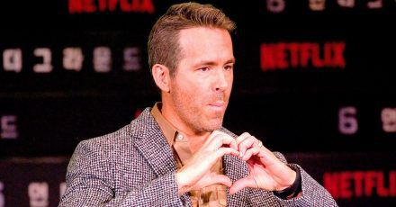 Auch Ryan Reynolds freut sich: Teddy in Kanada wieder aufgetaucht