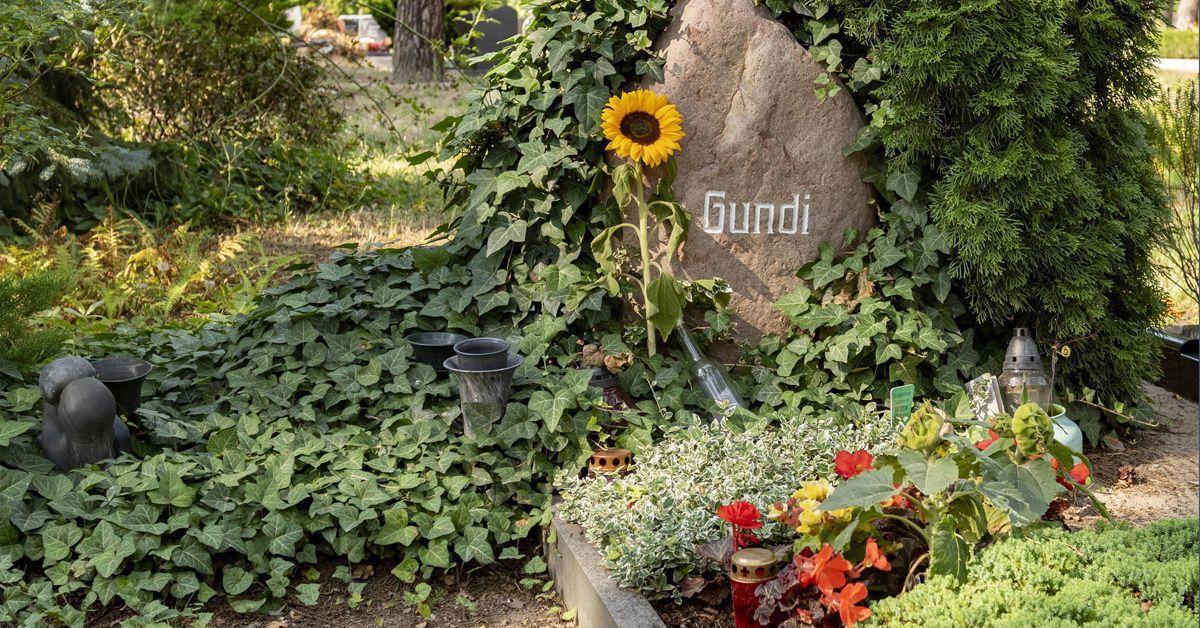 """Gundermann"" im TV: Der rätselhafteste Popstar der DDR"