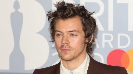 Harry Styles hat die nächste Filmrolle ergattert. (cam/spot)