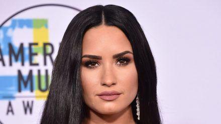 Hat Demi Lovato ihre Entscheidung ganz alleine getroffen? (rto/spot)
