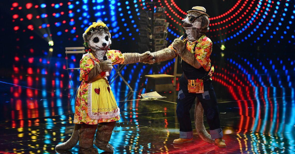 """Überraschung bei """"Masked Singer"""": Diesmal tritt ein Duo an!"""