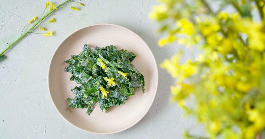 Krautsalat aus Kohlrabi-Blättern, die sonst in der Tonne landen würden - das Rezept stammt vom Foodblog «Ye Old Kitchen».