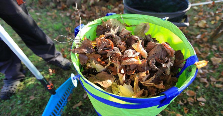 Zusammengekehrtes Laub: Auf dem Gehweg können nasse Blätter schnell zur Rutschpartie werden.