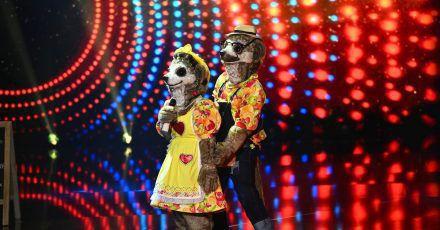 Zum Start der neuen Staffel von «The Masked Singer» singt «Familie Erdmann» gemeinsam auf der Bühne.