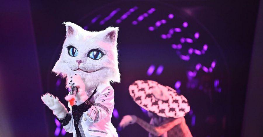 Die Figur «Die Katze» in der ProSieben-Show «The Masked Singer».
