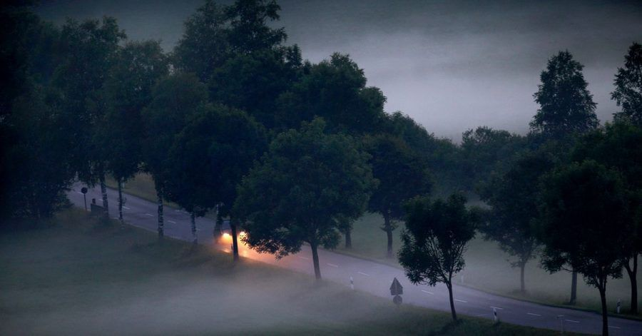 Vorsicht in der Dämmerung: Beim Übergang von Hell zu Dunkel steigt die Gefahr von Wildunfällen.
