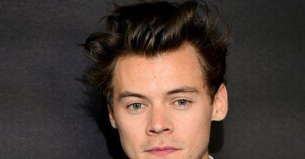 Harry Styles entpuppt sich als US-Wahlkampfhelfer.