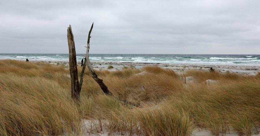 Bornholm im Winter, das bedeutet: Die Tage sind recht kurz so weit im Norden, der Wind pfeift. Die Regenwahrscheinlichkeit ist hoch.