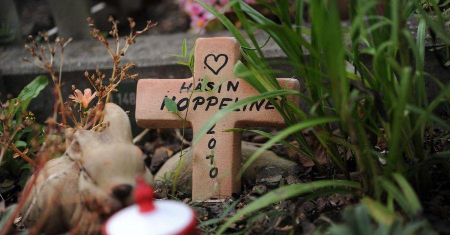 Ein kleines Grab mitzugestalten, kann für Kinder ein wichtiges Ritual sein, um den Tod eines Haustieres zu verkraften.