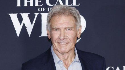 """Harrison Ford bei der Premiere seines Film """"Ruf der Wildnis"""" in Los Angeles (stk/spot)"""