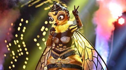 Die Biene musste als Erste wieder abschwirren (rto/spot)