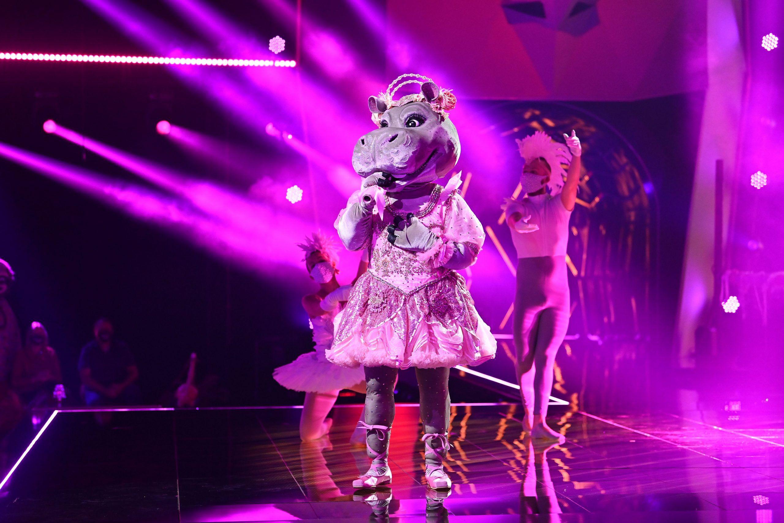 The Masked Singer: Das Nilpferd – Das Video!