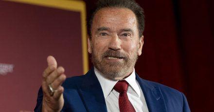 Arnold Schwarzenegger soll in der Serie einen Spion spielen.