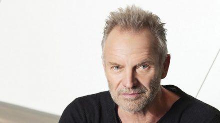 Sting muss sich vorläufig der Corona-Pandemie geschlagen geben (rto/spot)