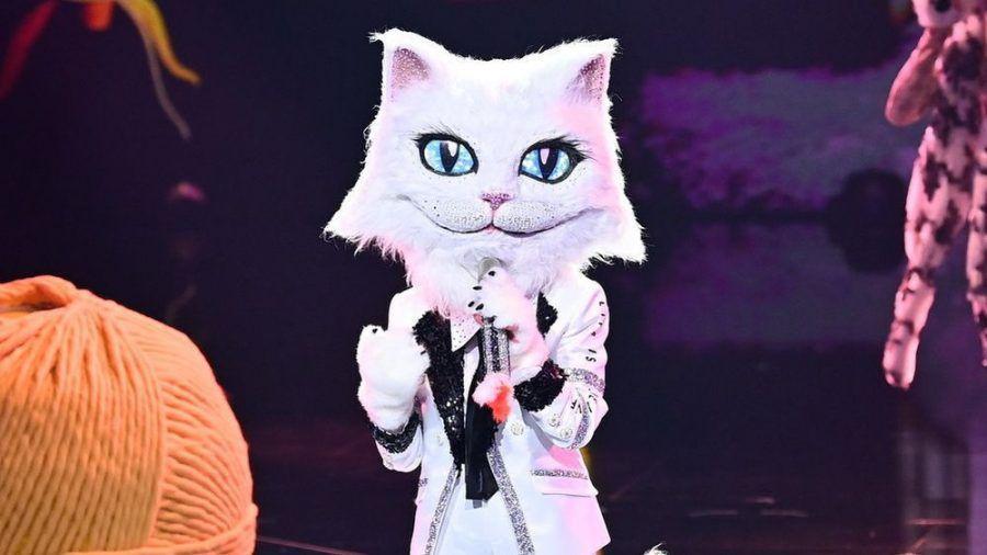 "Bei ""The Masked Singer"" musste die Katze enthüllen, welcher Promi im Kostüm steckt (wue/spot)"