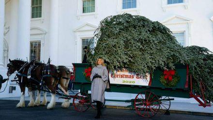 Melania Trump nimmt den Weihnachtsbaum für das Weiße Haus in Empfang (ili/spot)