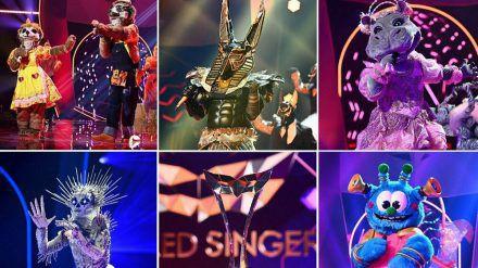 """Die Finalisten von """"The Masked Singer"""" stehen am Dienstagabend ein letztes Mal auf der Bühne. (jom/spot)"""