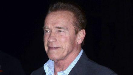 Arnold Schwarzenegger tut an Thanksgiving Gutes. (cos/spot)
