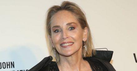 Sharon Stone: Mit Ausmalbüchern gegen den Corona-Stress