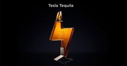 Elon Musk: Wie aus einer Schnaps-Idee bitterer Ernst wird...