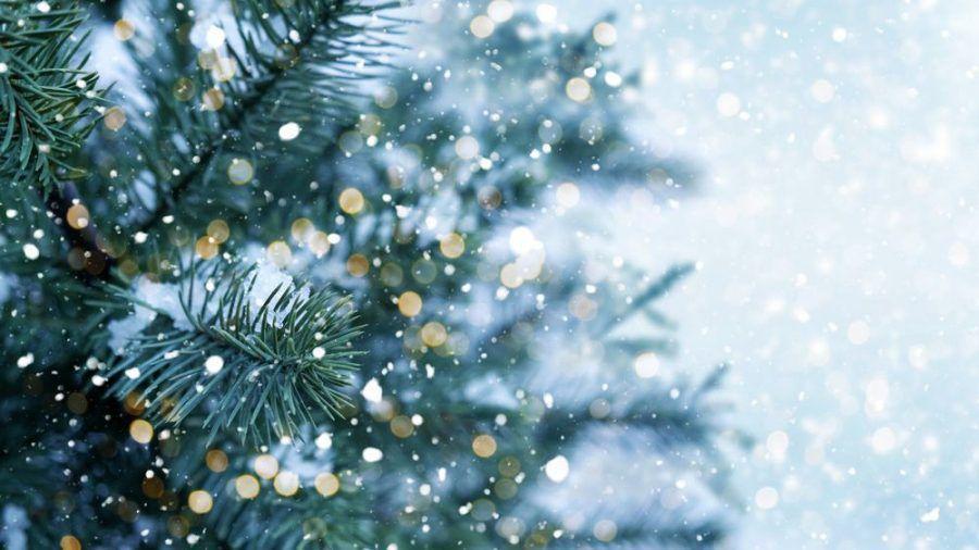 Schnee zum Weihnachtsfest sorgt für die richtige Stimmung. (jom/spot)