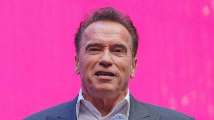 Arnold Schwarzenegger 2019 bei einem Auftritt in Russland (hub/spot)