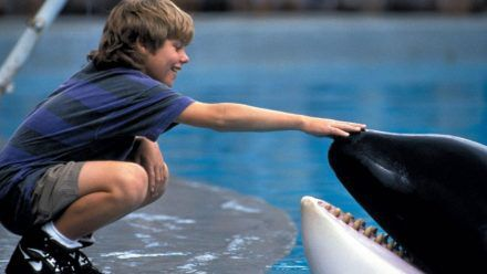 "Video: So hot sieht ""Free Willy""-Star Jason James Richter heute aus"