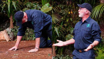 Dschungelshow Tag 11: Die eine kämpft mit der Sucht, die andere mit den Tränen