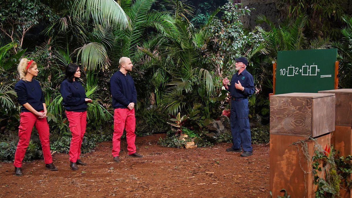 Dschungelshow: Letzter Tag für die letzte Gruppe