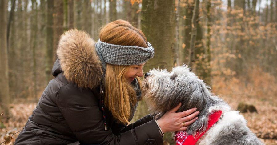 Die Nähe zu einem Menschen kann ein Haustier nicht ersetzen. Aber es kann eine große Bereicherung sein.