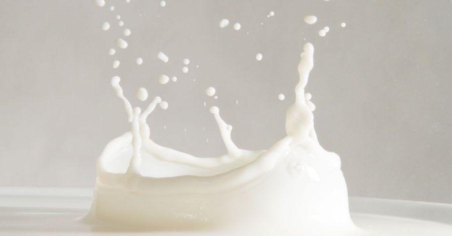 Milch liefert dem Körper Proteine, Vitamine und Mineralstoffe.