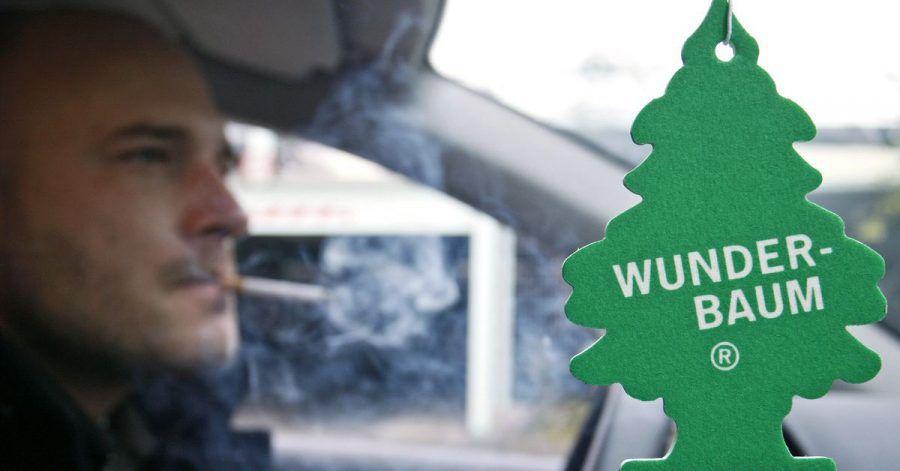 Ein Wunderbaum (Duftbaum) soll, während ein Mann raucht, in einem Auto die Luft verbessern. (Symbolbild)
