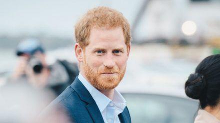 Derart kurze Haare soll Prinz Harry angeblich nicht mehr tragen. (wue/spot)