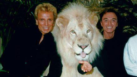 Die Magier Siegfried (l.) und Roy mit einem weißen Löwen (wue/spot)