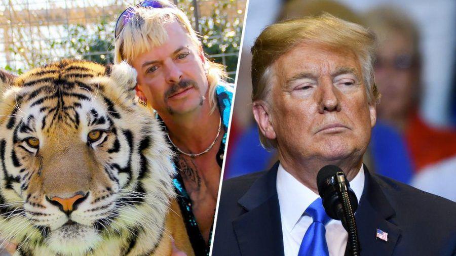 """Tiger King"" Joe Exotic steht nicht auf Donald Trumps Begnadigungs-Liste. (hub/spot)"