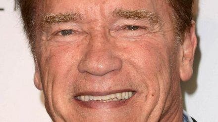 Arnold Schwarzenegger kann Impfen nur empfehlen (mia/spot)