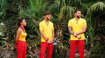 """""""Ich bin ein Star - Die große Dschungelshow"""" (v.l.): Christina Dimitriou, Sam Dylan und Oliver Sanne (ili/spot)"""