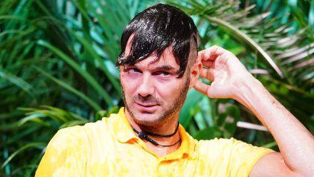 Dschungelshow: Hach, Sam Dylan will an Tag 2 schon wieder gehen?